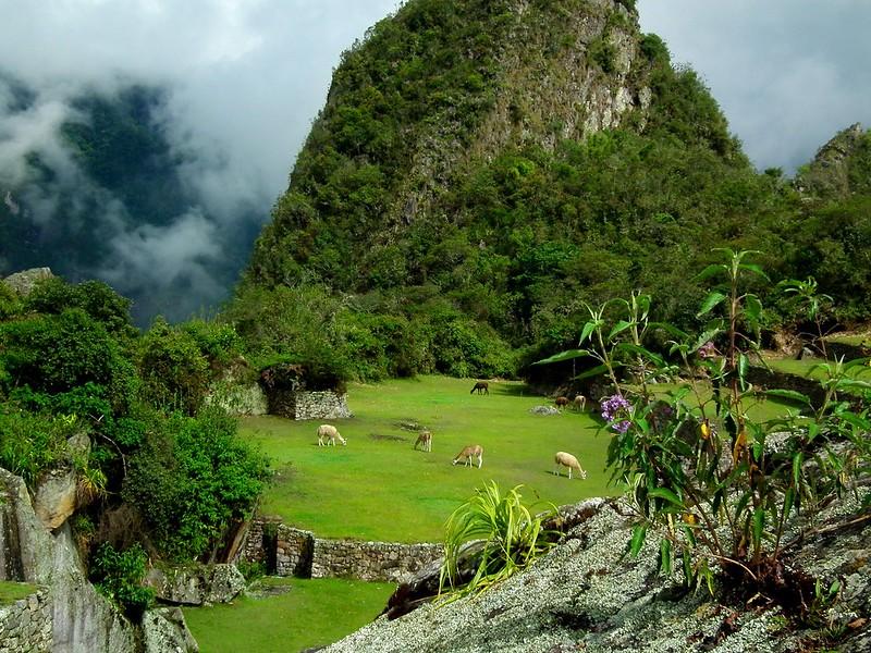 Sacred Valley Tour: Machu Picchu