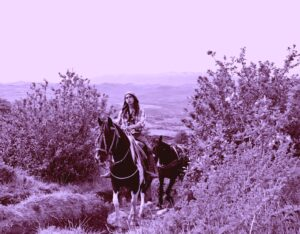 DSC_0436 – Arriero – Patagonia